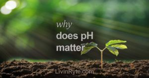 Why Does pH Matter?