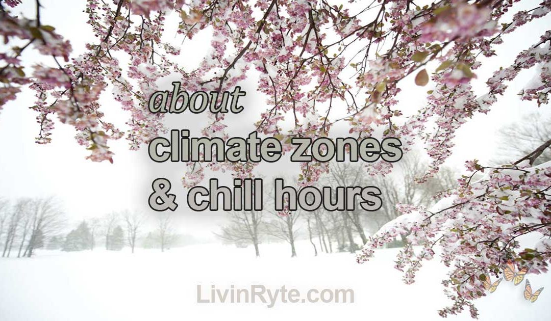 Climate Zones and Chill Hours