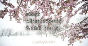 Climate Zones and Chill Hours Image