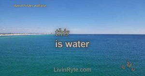 """""""This is Water"""" by David Foster Wallace"""