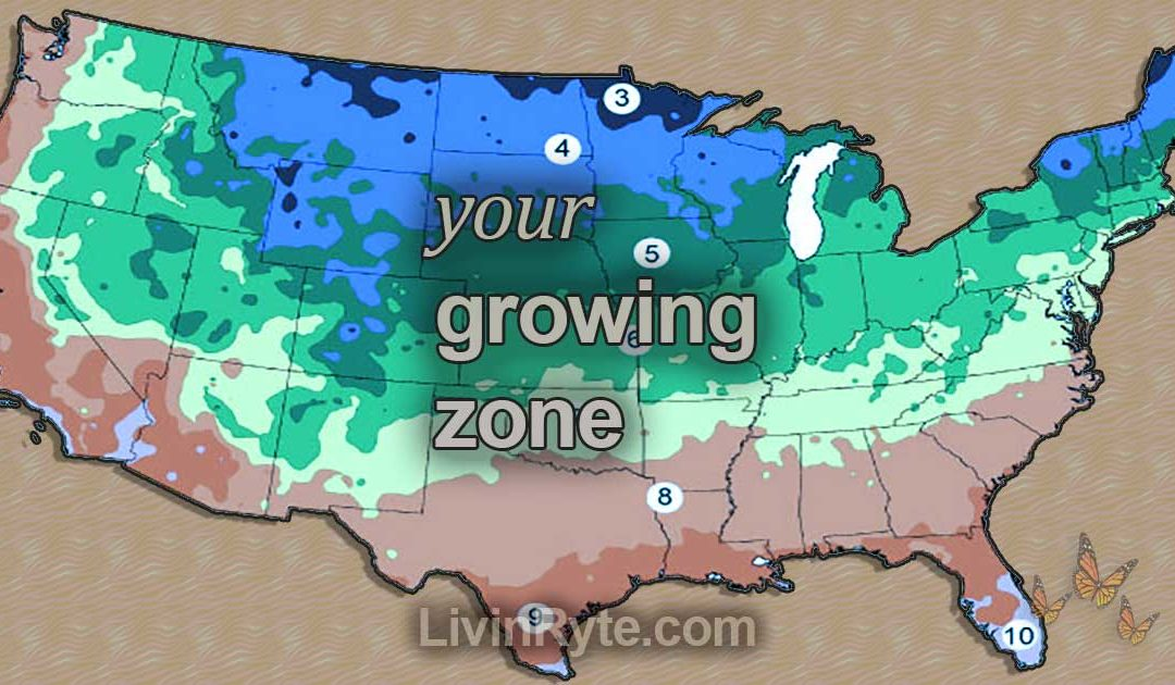 Growing zone map of United States