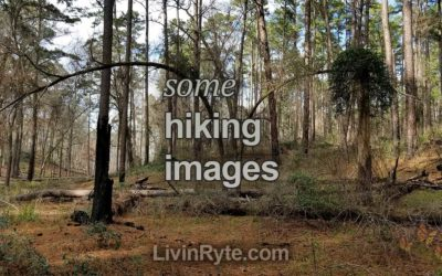 Hiking Images